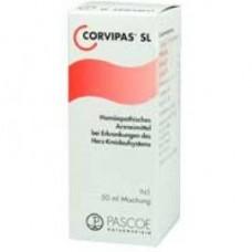 CORVIPAS SL**