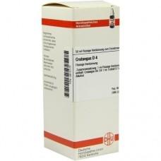 CRATAEGUS D 4 Dilution 50 ml