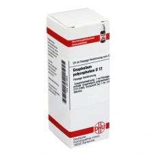 GNAPHALIUM POLYCEPHALUM D 12 Dilution 20 ml