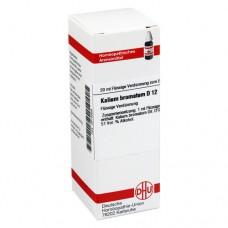 KALIUM BROMATUM D 12 Dilution 20 ml