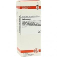 LEDUM EXTERN Tinktur 50 ml