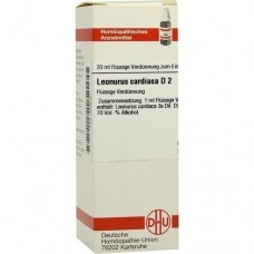 LEONURUS CARDIACA D 2 Dilution 20 ml