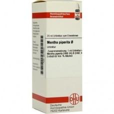 MENTHA PIPERITA Urtinktur 20 ml