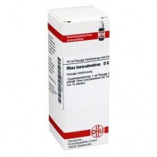 RHUS TOXICODENDRON D 8 Dilution 20 ml