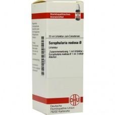 SCROPHULARIA NODOSA Urtinktur 20 ml