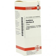 SCUTELLARIA LATERIFLORA Urtinktur 20 ml