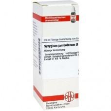 SYZYGIUM JAMBOLANUM D 6 Dilution 20 ml