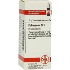 ECHINACEA HAB D 1 Globuli 10 g
