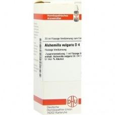 ALCHEMILLA VULGARIS D 4 Dilution 20 ml