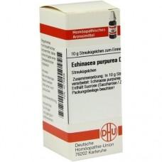 ECHINACEA PURPUREA D 4 Globuli 10 g