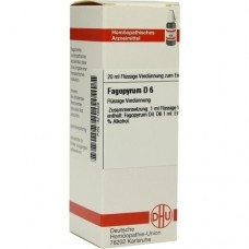 FAGOPYRUM D 6 Dilution 20 ml