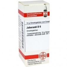 JABORANDI D 6 Globuli 10 g