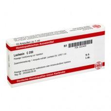 LACHESIS C 200 Ampullen 10X1 ml