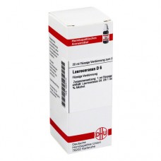 LAUROCERASUS D 6 Dilution 20 ml