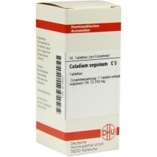 CALADIUM seguinum C 5 Tabletten 80 St