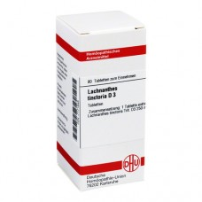 LACHNANTHES tinctoria D 3 Tabletten 80 St