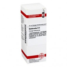QUEBRACHO D 4 Dilution 20 ml