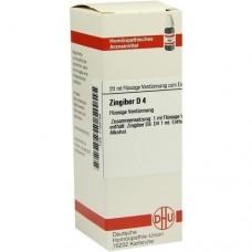 ZINGIBER D 4 Dilution 20 ml