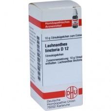 LACHNANTHES tinctoria D 12 Globuli 10 g