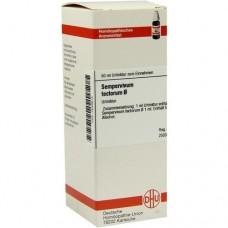 SEMPERVIVUM tectorum Urtinktur 50 ml