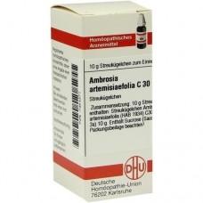 AMBROSIA ARTEMISIIFOLIA C 30 Globuli 10 g