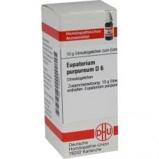 EUPATORIUM PURPUREUM D 6 Globuli 10 g