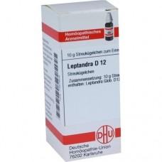 LEPTANDRA D 12 Globuli 10 g