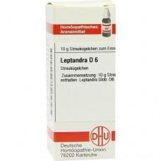 LEPTANDRA D 6 Globuli 10 g