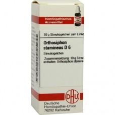 ORTHOSIPHON STAMINEUS D 6 Globuli 10 g