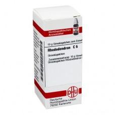 RHODODENDRON C 6 Globuli 10 g