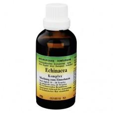 ECHINACEA ABWEHRSTEIGERUNG Complex Tropfen 50 ml