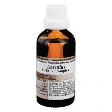 AESCULUS 6 Uhr Oligosancomplex Liquidum 50 ml