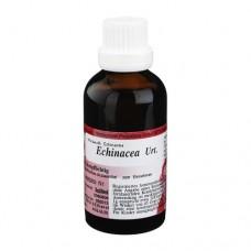 ECHINACEA Urtinktur 50 ml