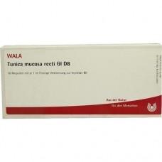TUNICA MUCOSA RECTI. GL D 8 Ampullen 10X1 ml