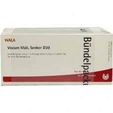 VISCUM MALI Senker D 30 Ampullen 50X1 ml