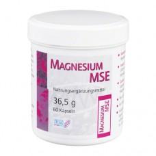 MAGNESIUM MSE Kapseln 60 St