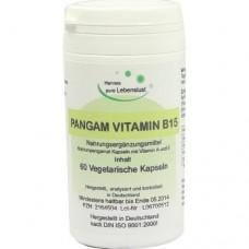 PANGAM Vitamin B15 Kapseln 60 St
