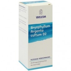 BRYOPHYLLUM ARGENTO cultum D 2 Dilution 50 ml