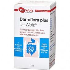DARMFLORA plus Pulver 70 g