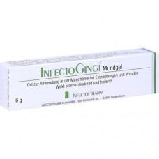 INFECTOGINGI Mundgel 6 g