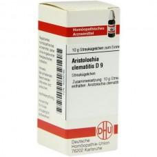 ARISTOLOCHIA CLEM D 9 10 G